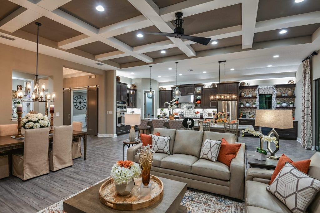 Kitchen and living room with white tray ceiling detail